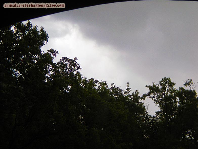 stormy-sky