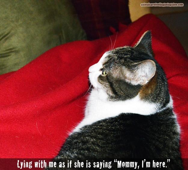 cino-lying-on-me