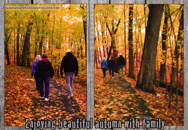 family-walking-poster-aafbt