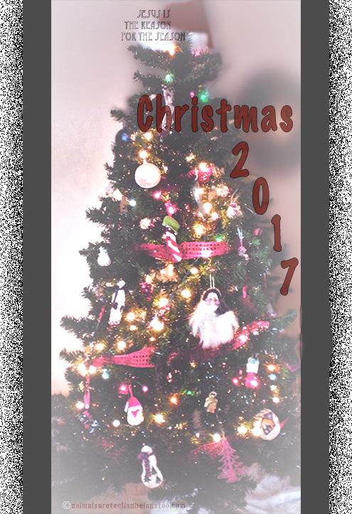christmas tree 2017-aafbt