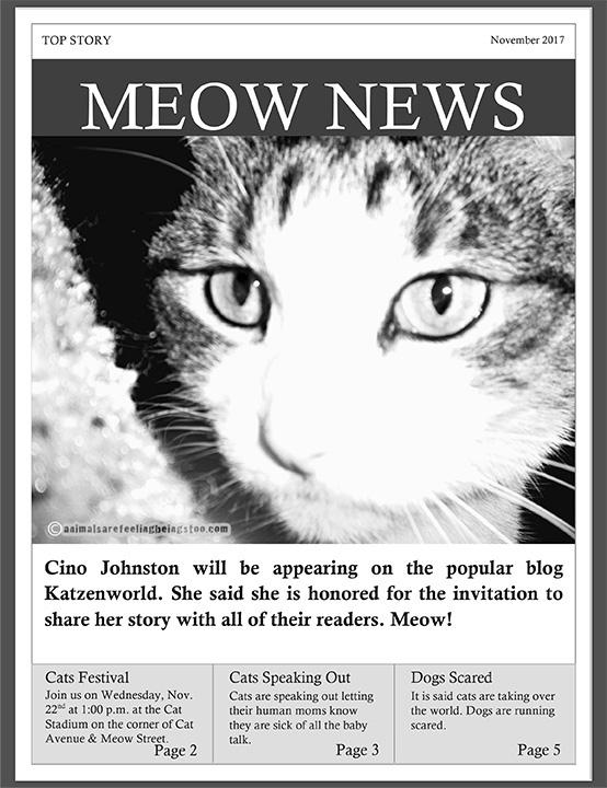 Microsoft Word - meow news.docx