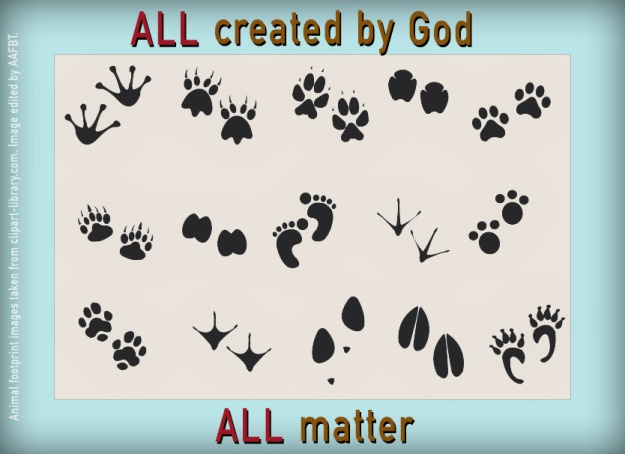 footprints-all-matter