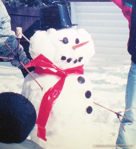 princess-leah-snowman-aafbt