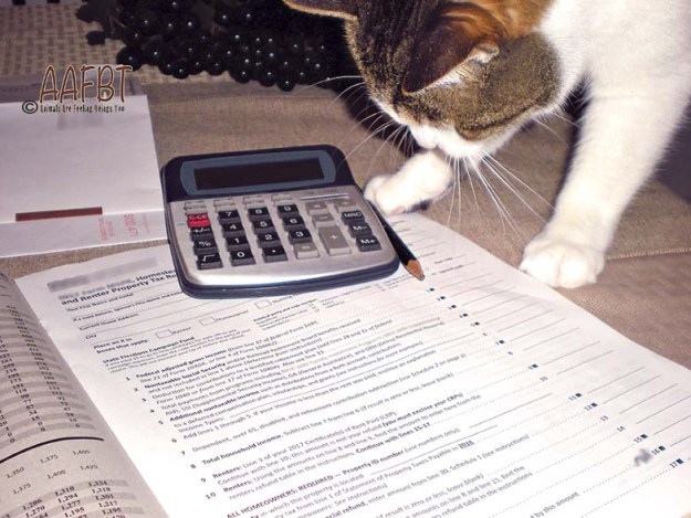 cino-helping-with-taxes-aafbt