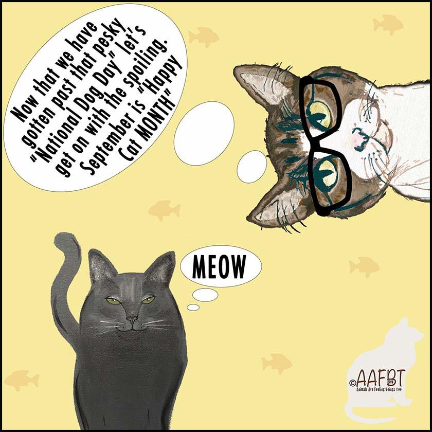 happy-cat-month-2018-aafbt