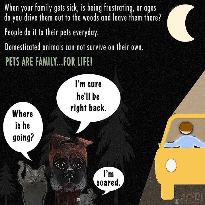 don't abandon your pets-aafbt