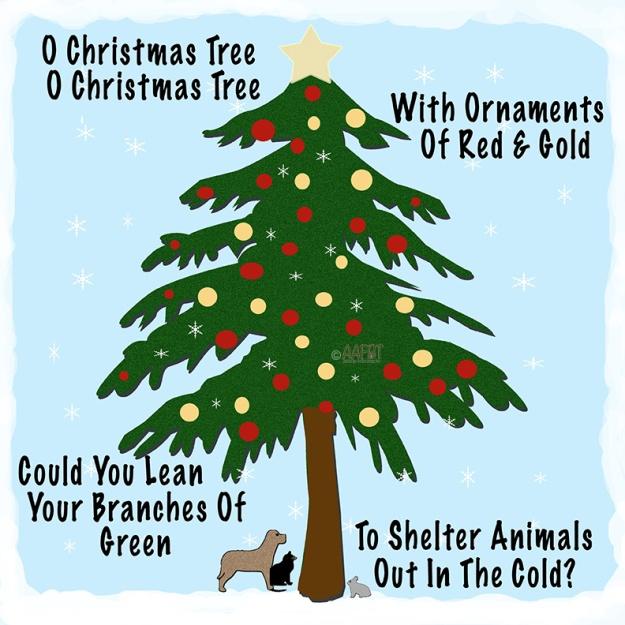 o christmas tree-aafbt