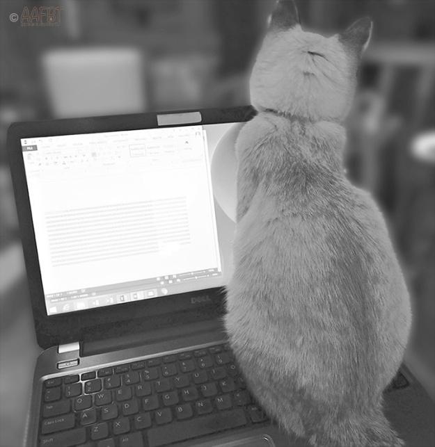 typing-bw-aafbt