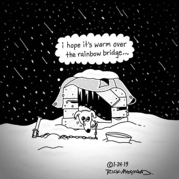 cartoon-dog-freezing-outside