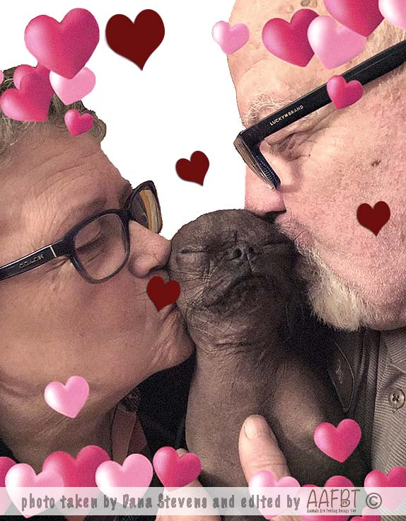 grandma-grandpa-kisses-ds-aafbt