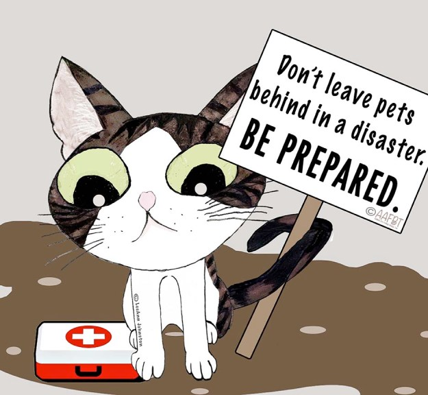 disaster-preparedness-aafbt