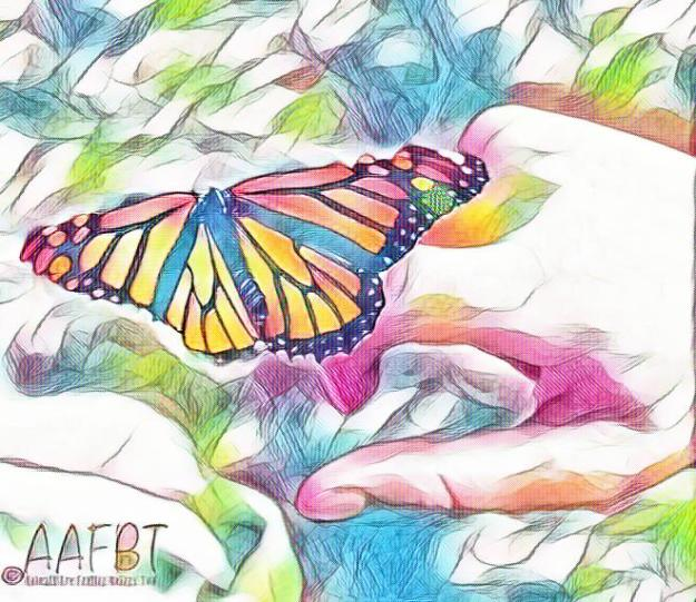 butterfly-on-hand-art-aafbt