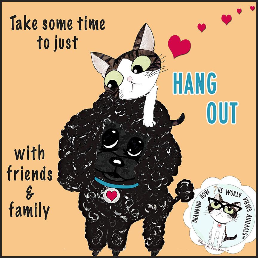hang-out-dog-cat-aafbt