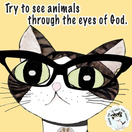 through-eyes-of-god-aafbt