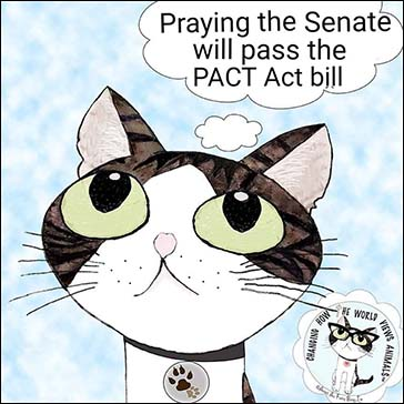 PACT Act bill-small
