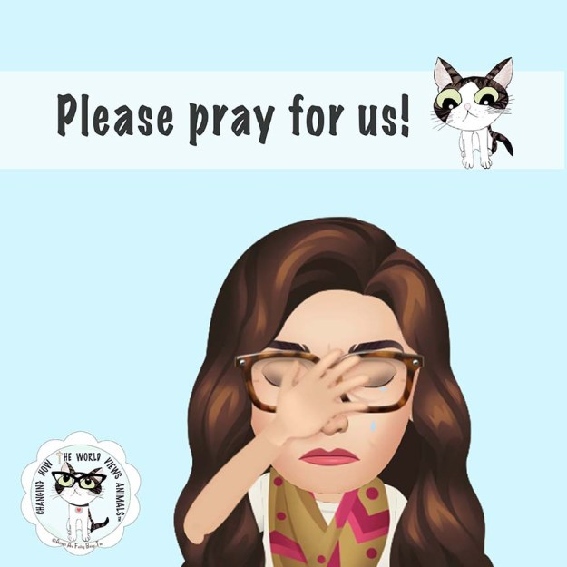 please-pray-for-us-aafbt-sm