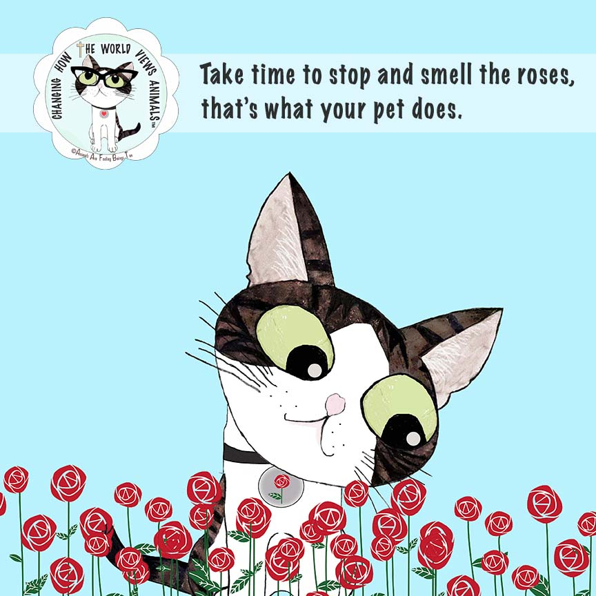 smell-roses-pet-does-aafbt